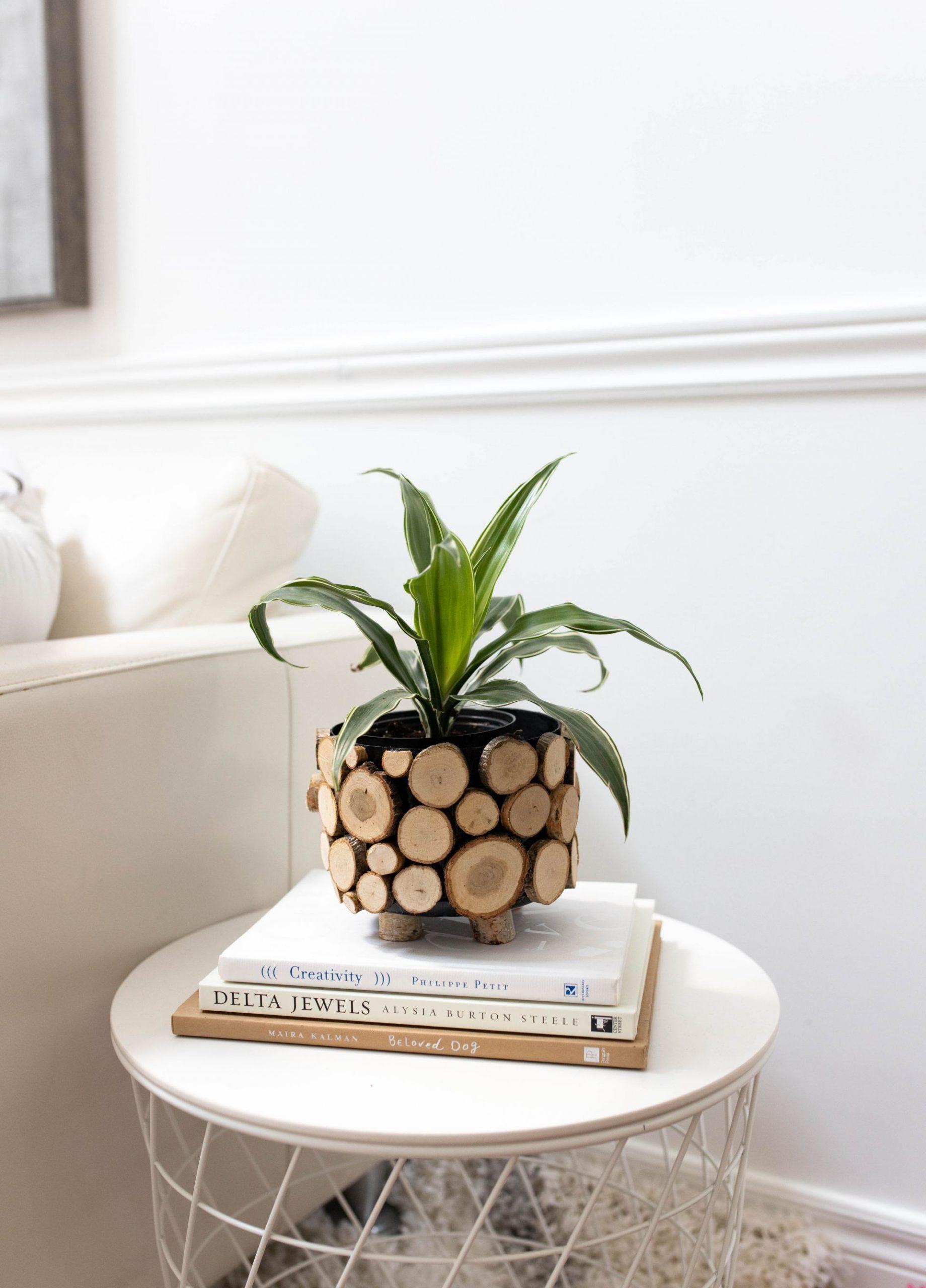 Inexpensive Rustic Indoor Planter DIY