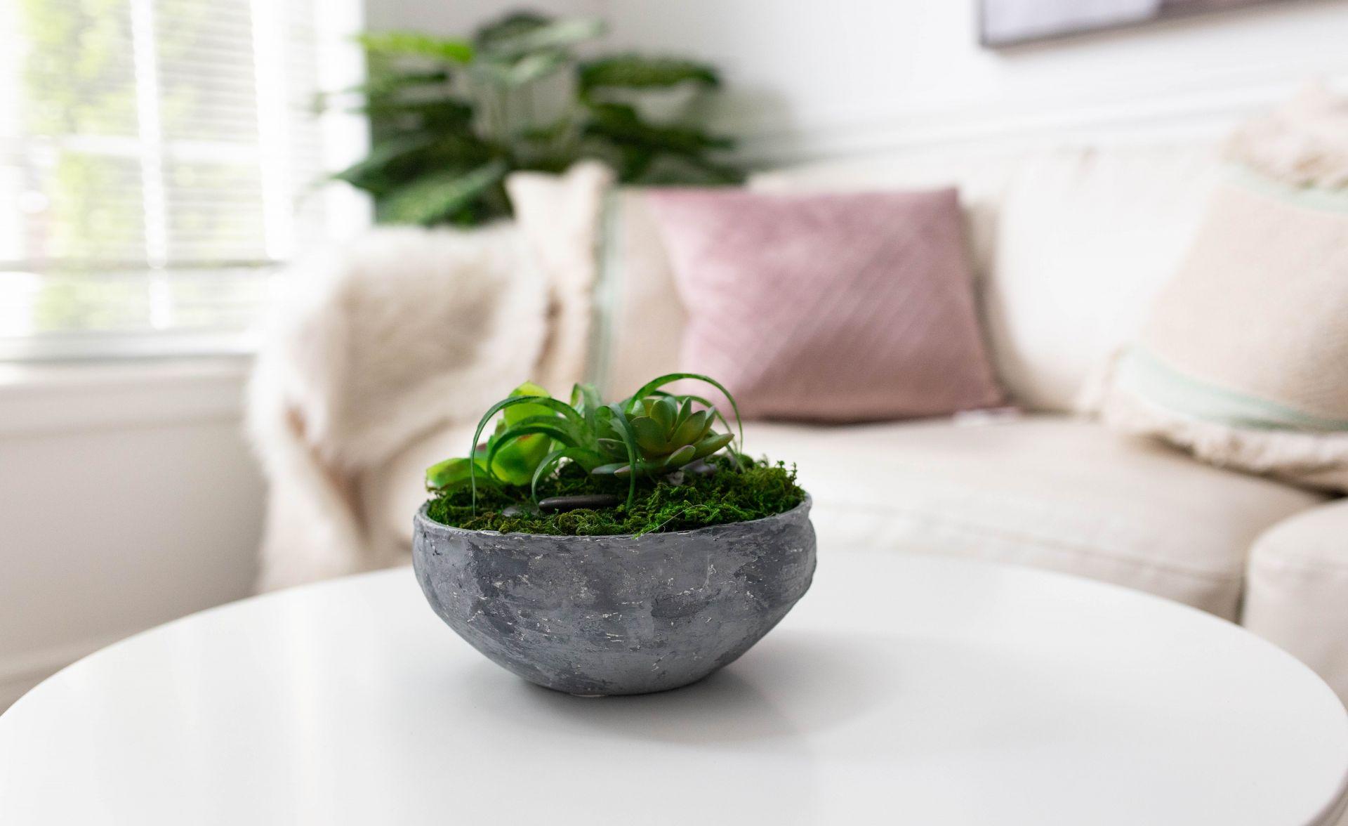 DIY Restoration Hardware Moss Bowl